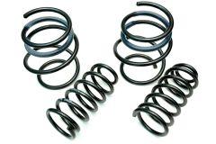 lohen-eibach-mini-lowering-springs.jpg